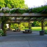 10 inšpirácii na krásne záhradné pergoly